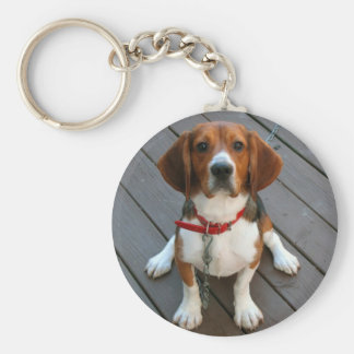 El perro más lindo del beagle nunca llavero redondo tipo pin