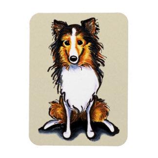 El perro pastor de Sheltie Shetland del Sable sien Iman