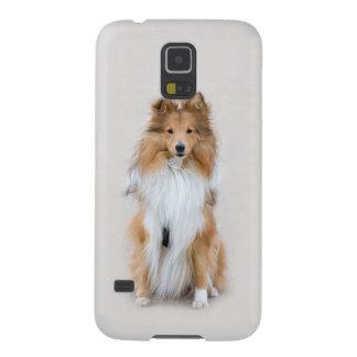 El perro pastor de Shetland, perro lindo Samsung Carcasa Galaxy S5