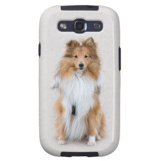 El perro pastor de Shetland perro lindo Samsung d