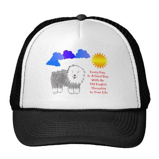 El perro pastor inglés viejo cada día es un gorra