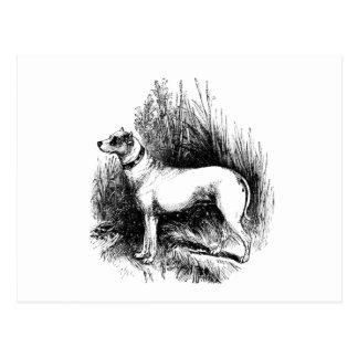 El perro perdiguero confiable tarjeta postal