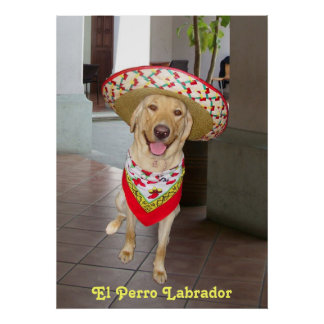 El Perro Poster
