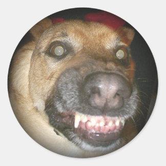 El perro psico se descolora para ennegrecerse pegatina redonda