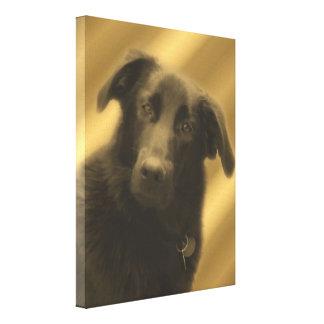 El perro sabio conmovedor observa el animal impresión en tela