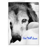 el perro soñoliento de la abrazo en cama consigue  tarjeta