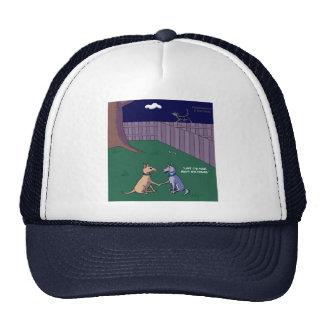 El perro trata el gorra