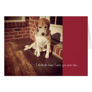 El perro triste que le falta carda tarjeta de felicitación
