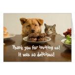 El perro y el gato divertidos le agradecen por la  felicitaciones