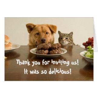 El perro y el gato divertidos le agradecen por la tarjeta de felicitación