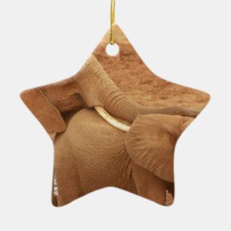 el personalizado del elefante personaliza adorno navideño de cerámica en forma de estrella