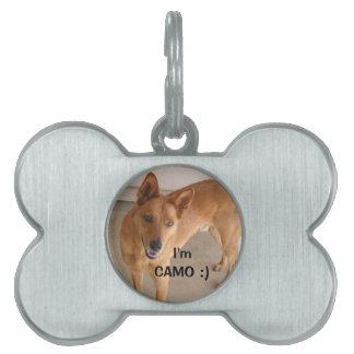El personalizar añade la placa de identificación d placas de mascota