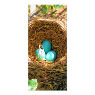 El petirrojo eggs unhatched en una jerarquía del á tarjeta publicitaria
