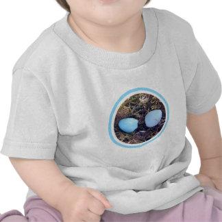 El petirrojo vacío Eggs la ropa del bebé Camisetas