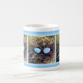 El petirrojo vacío Eggs la taza