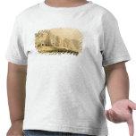 El Petra, el 8 de marzo de 1839, platea 96 del Camiseta
