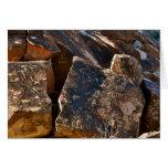 El petroglifo del paso del árbol de Nevada Chistma