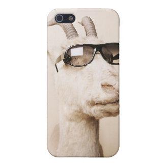 El phonecase de la cabra iPhone 5 funda