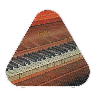 El piano cierra el altavoz de Pieladium
