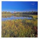 El pico del índice refleja en el lago mud en azulejo cuadrado grande