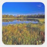 El pico del índice refleja en el lago mud en pegatina cuadrada