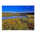 El pico del índice refleja en el lago mud en postales