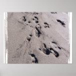 El pie imprime en arena mojada de la playa hacia e poster