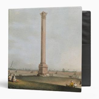 """El pilar de Pompey, platea 14 de """"opiniónes en Egi"""