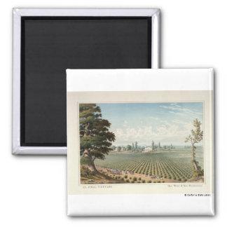 El Pinal Vineyard, San Joaquin County 2 Inch Square Magnet