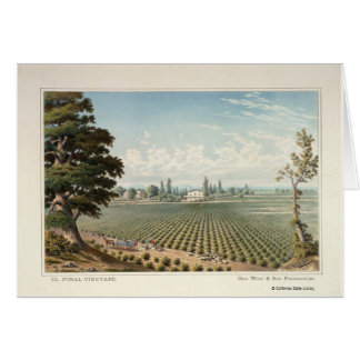 El Pinal Vineyard, San Joaquin County Card