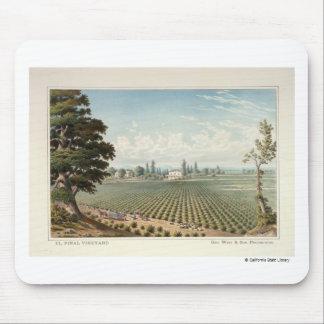 El Pinal Vineyard, San Joaquin County Mouse Pad