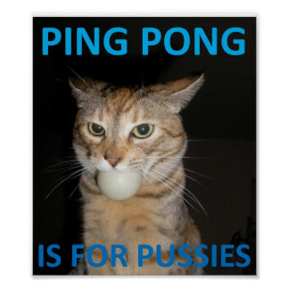 El ping-pong está para los gatitos póster