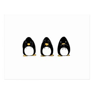 El pingüino lindo ve que hablar no oiga ningún mal tarjetas postales