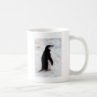 El pingüino más lindo, nunca taza