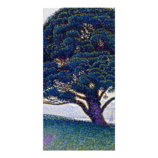 El pino de Bonaventure de Paul Signac Tarjeta Fotografica