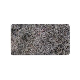 El pino secado sale del modelo del fondo etiquetas de dirección