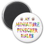 El Pinscher miniatura gobierna la diversión Iman De Nevera