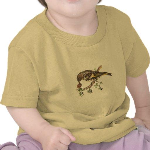El pinzón de pino(pinus del Carduelis) Camisetas