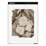 El placer turco (locum) es un caramelo dulce de Is iPad 3 Skin