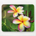 El Plumeria de Maui florece Mousepad Tapete De Raton