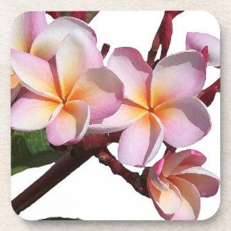 El Plumeria florece el práctico de costa del corch Posavasos Para Bebidas