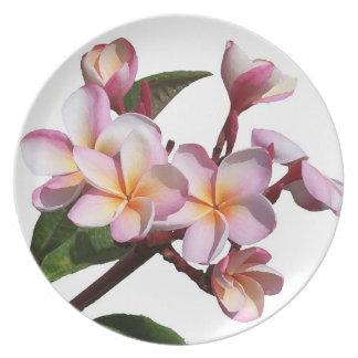 El Plumeria florece la placa Plato