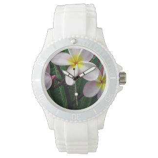El Plumeria rosado y amarillo florece el reloj