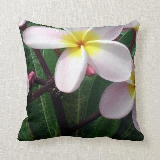 El Plumeria tropical florece la almohada