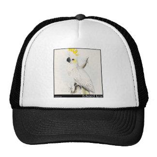 El poco Cockatoo Azufre-Con cresta de Edward Lear Gorro De Camionero
