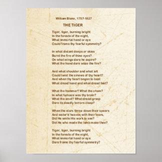 El poema del TIGRE de Guillermo Blake Póster