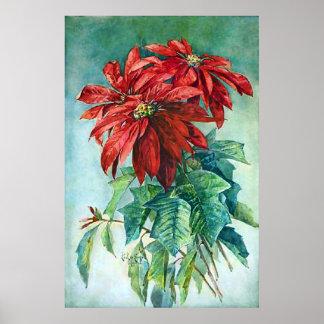 El Poinsettia rojo florece el poster de la pintura Póster