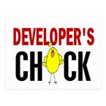 El polluelo 1 del desarrollador tarjeta postal