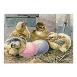"""El polluelo de Pascua coloreado Eggs la paja del Invitación 5"""" X 7"""""""