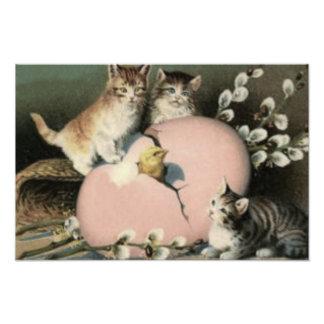 El polluelo de Pascua del gato del gatito coloreó  Arte Con Fotos